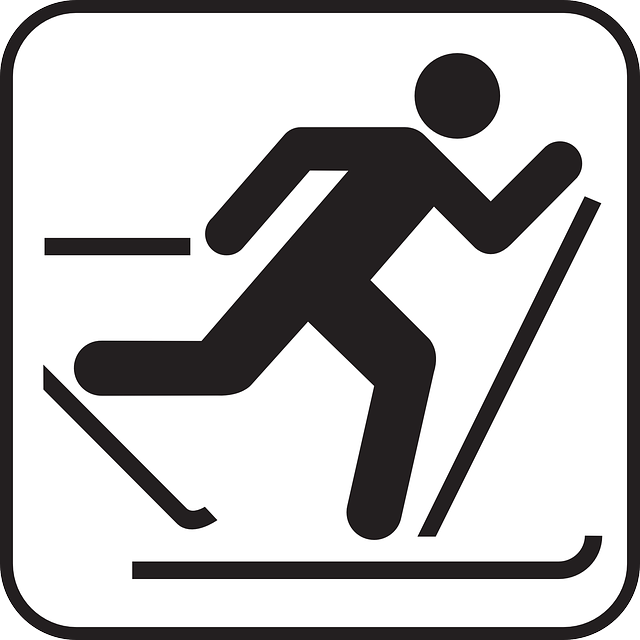 cross country ski logo